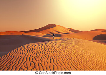 Hike in desert - Hike in Great Sands Dunes,USA