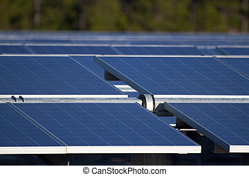 Solar Farm - Central Florida power generation farm's solar...
