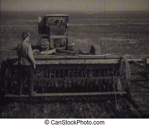 Gathering of grain crops in the USSR. Newsreel.