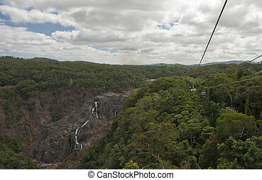 Rain Forest on the road to Kuranda - Rai n Forest near...