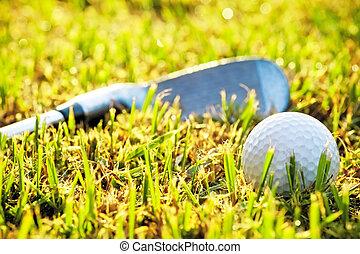 Golf ball in the grass, near a putter.