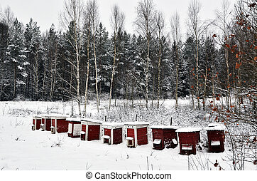 Red hives in winter - Red bee hives in winter