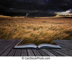 verão, tornado, campos, sobre, livro, Tempestade, twister,...