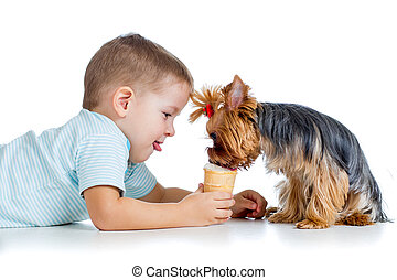 boy kid feeding dog isolated on white background