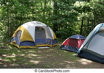 Sunlit Campsite - Three tents sitting in the shade on a...