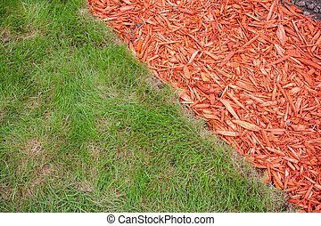 Grass and mulch - Green grass and red mulch background