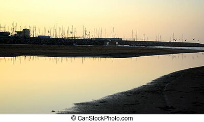 Birds reflected on water 01 - View of calmed waters of the...