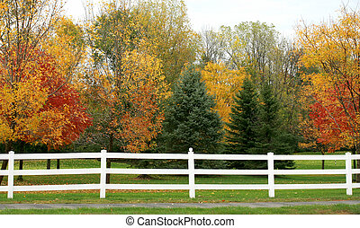 White Picket Fence in the Fall