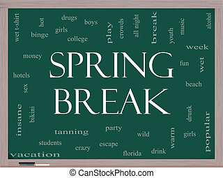 Spring Break Word Cloud Concept on a Blackboard with great...