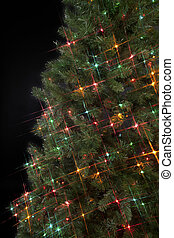 Image of a Christmas tree decorated with decorative Christmas lights against a dark black background.