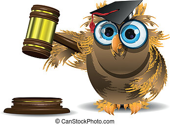 judge owl - illustration of an owl in a cap with a judge...