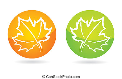 Hand drawing Maple leaf icon set