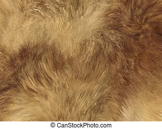 Fashion: fox fell or fur background. Large resolution