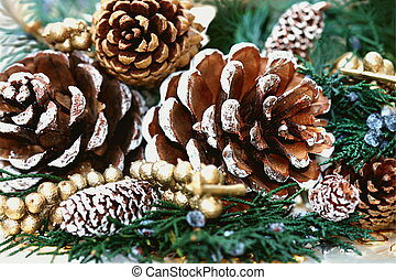 Pine tree cones - Frosted pine tree cones
