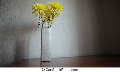Yellow chrysanthemum on white background