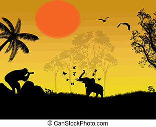 Photographer at sunset shoot a baby elephant