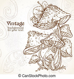 Poisonous mushrooms fabulous vintage background for your...