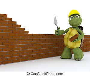 烏龜, 建築物, 承包商