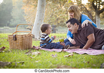 Happy Mixed Race Ethnic Family Having Picnic In The Park