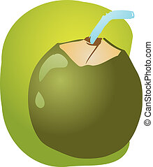 Young green coconut - Sketch of young green coconut, fruit...