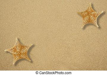 deux, étoile, fish, sable