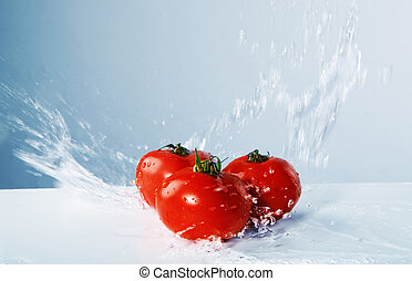 Juicy tomatoes thrown water on the blue background