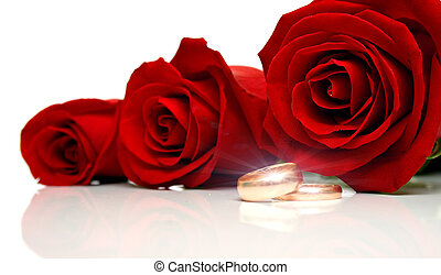 Wedding rings 2 - Wedding rings and red roses on white...