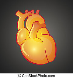 Graphic illustration of Heart
