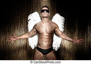 Conceptual photo of handsome, muscular male angel.