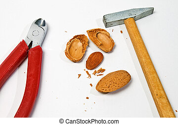 hammer and clipper for almond - hammer and clipper for...