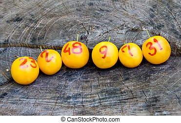 line of lottery plums - line of lottery yellow plums as...