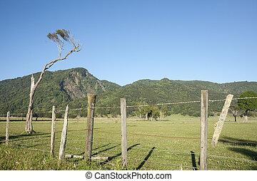 Rural scene. - Rural scene, bush clad hills in background.
