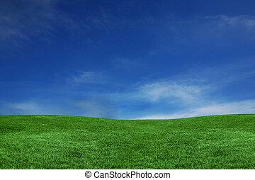 bleu, vert, herbe, ciel, paysage