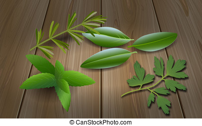 Herbs ( Laurel , Rosemary,Mint, Parsley )