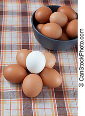 Eggs - Brown eggs in blue bowl and a circle of brown eggs...