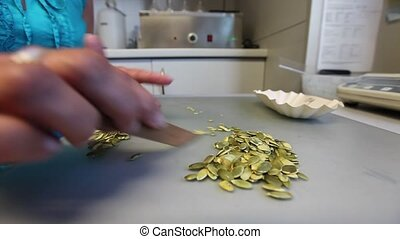 Woman sorting pumpkin seeds - Cropped view of the hands of a...