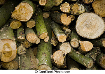 logs - a lot of wood