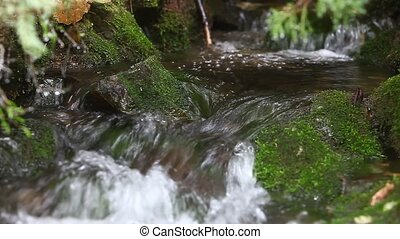 Stream of drinkable water - The scene was shot with 5D mark...