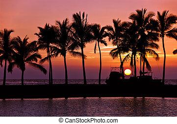 Sunset silhouettes in Hawaii