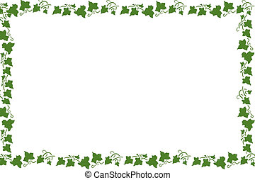 Frame of grapevine leaves on white background