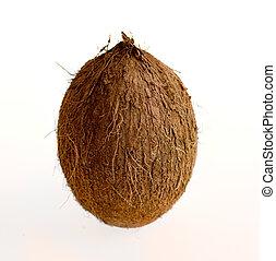 kokosnuss, Freigestellt, weißes, hintergrund