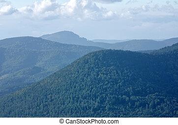 the Vosges