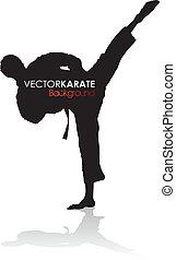 karate silhouette