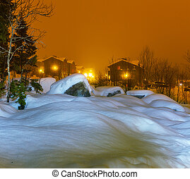 Winter night - Winter scene at night