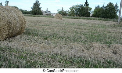 man move straw bale field