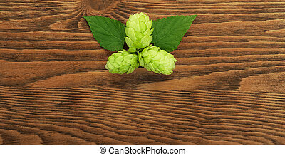 Hop plant on a wooden table - Image of a hop plant on a...