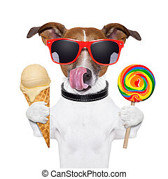 sugar doggy - dog licking with ice cream and lolly