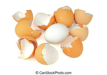 broken egg shells with one good egg - A collection of broken...