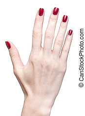 hands with red manicure - hands with womans professional red...