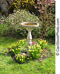 Bird bath in country garden